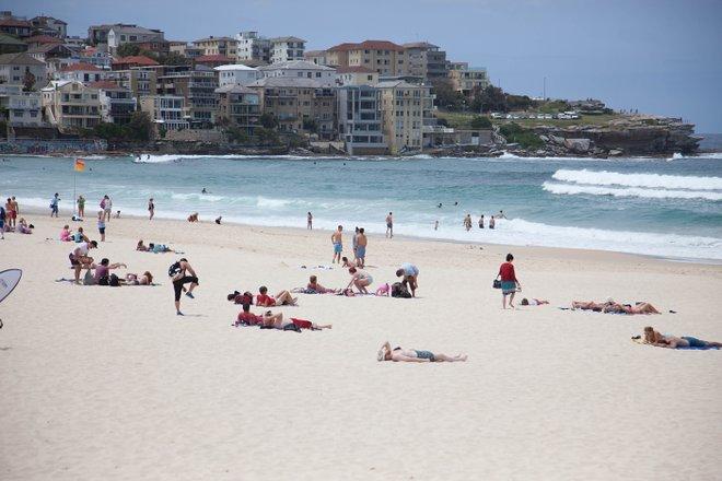 Bondi Beach, Sydney/Oyster