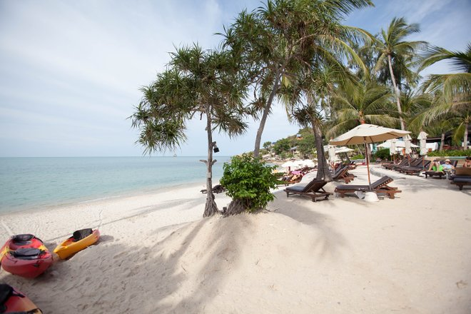 Beach at the Melati Beach Resort & Spa, Koh Samui, Thailand/Oyster