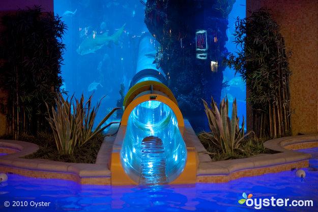 Golden Nugget Hotel & Casino, Las Vegas