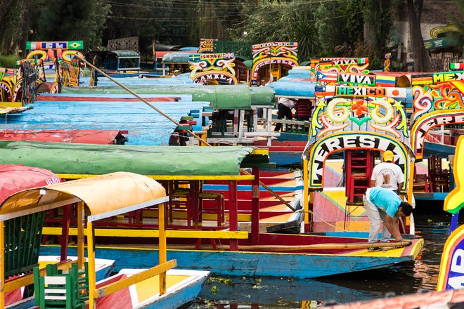 The canals of Xochimilco, in the city's south/Oyster