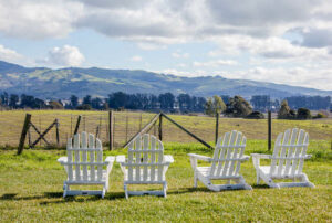 Carneros Resort and Spa, Napa/Oyster