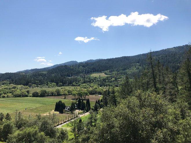 View from Sterling Vineyards; Lara Grant