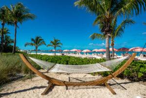 Beach at Ocean Club Resort/Oyster