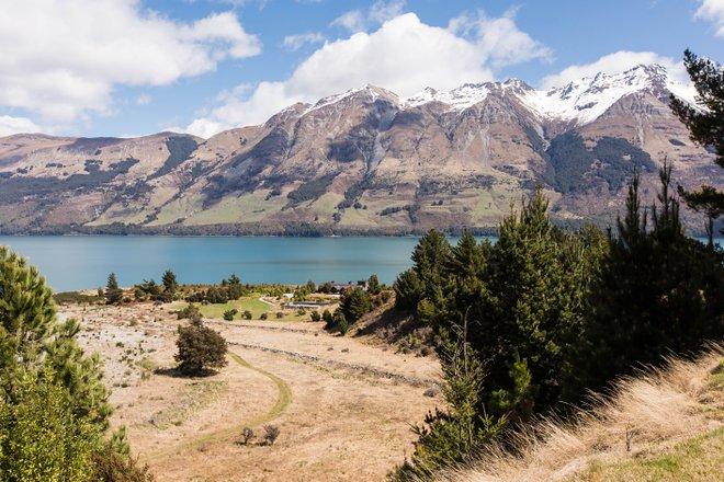 Cobertor Bay, Nova Zelândia / Ostra
