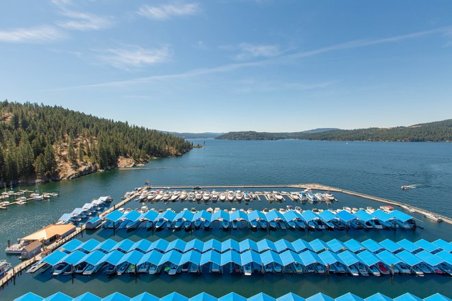 The Coeur d'Alene Resort/Oyster