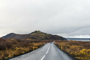 Ring Road, Iceland/Oyster
