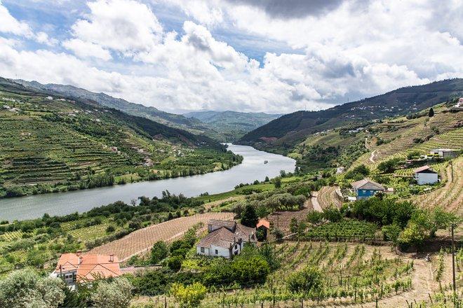 Vale do Douro; Teddie Bridget Proctor / Flickr