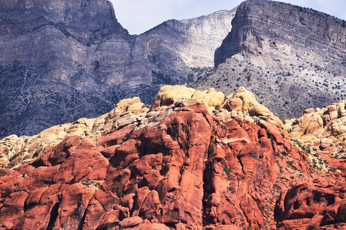 Red Rock Canyon Tour/Viator