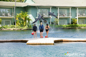 Dolphin Quest at The Kahala Hotel and Resort; Oahu, HI