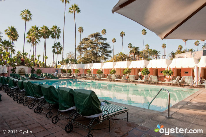The Pool at The Beverly Hills Hotel; Beverly Hills, CA