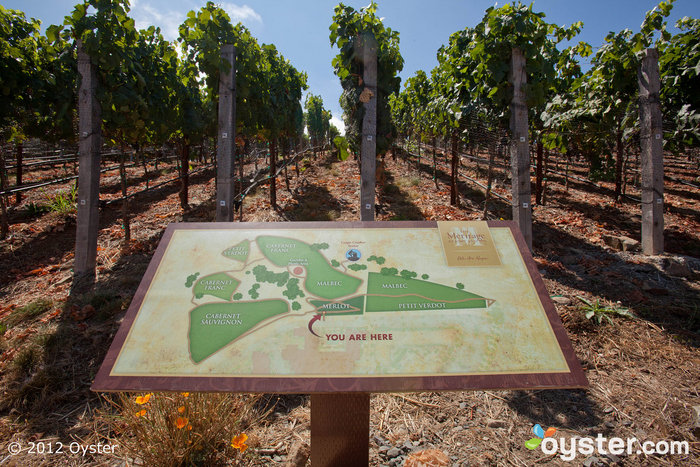 Vineyard at The Meritage Resort and Spa