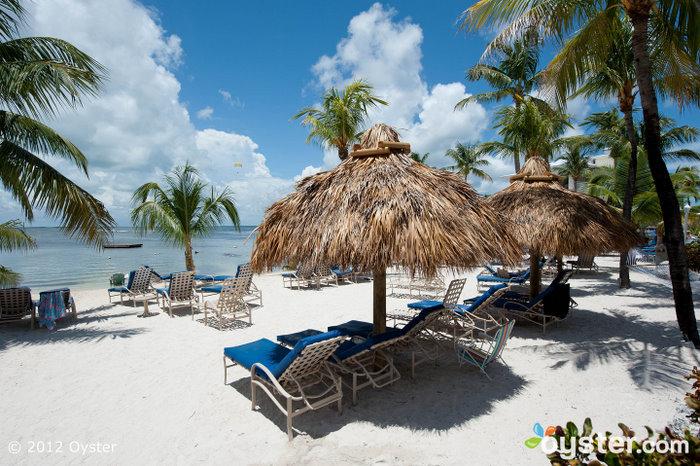 Beach at the Marriott Key Largo Bay Beach Resort; Florida Keys