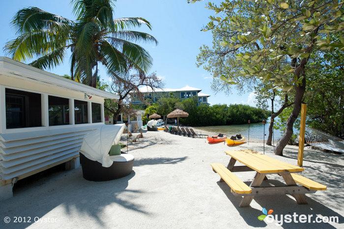 Strange Neu Bei Oyster Florida Keys Download Free Architecture Designs Momecebritishbridgeorg