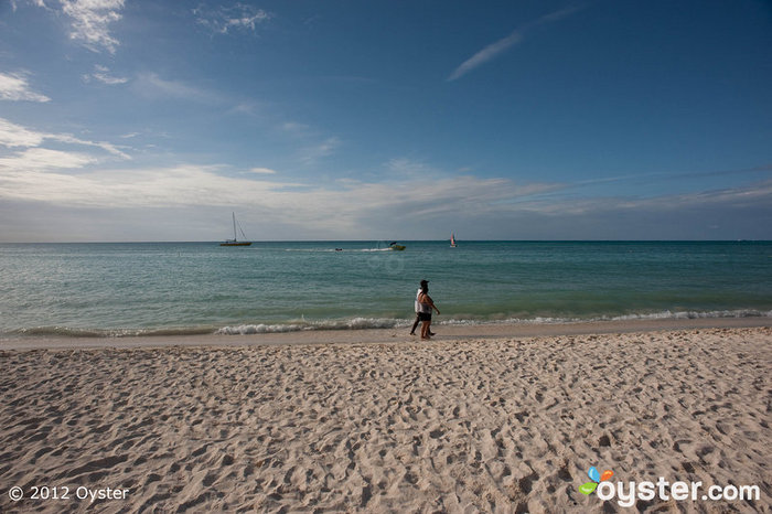 Beach at the Radisson Aruba Resort Casino Spa