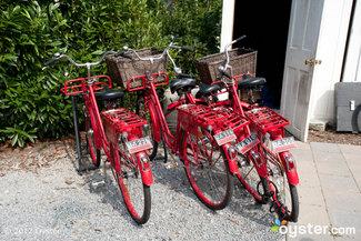 Bicycles at C/O The Maidstone -- East Hampton