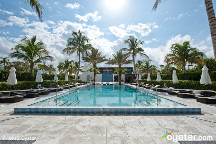 Pool at the Omphoy Ocean Resort -- Palm Beach