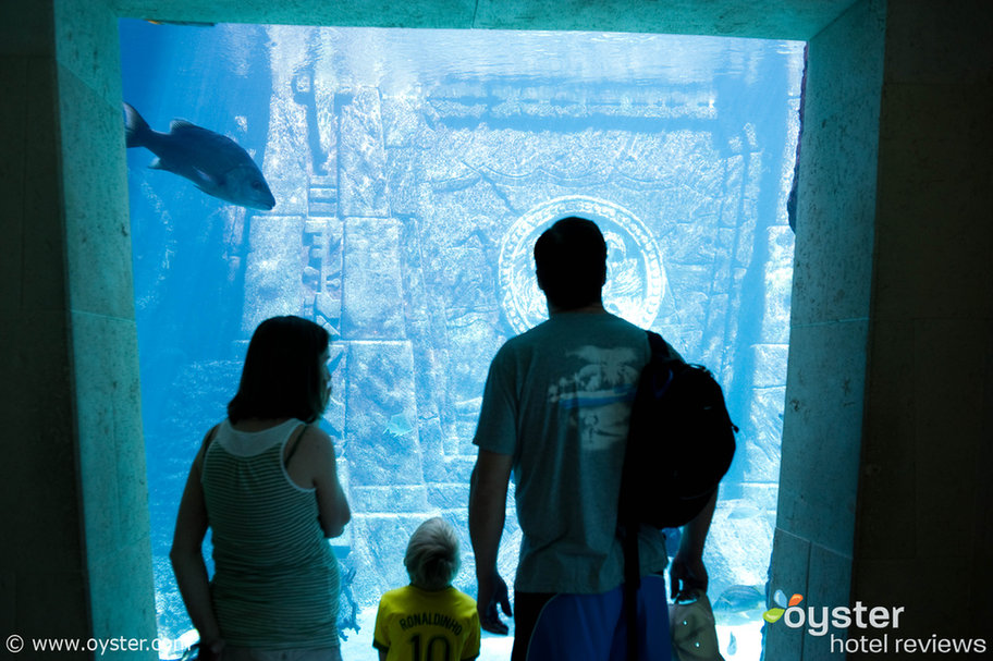 The Aquarium at the Great Hall of Waters