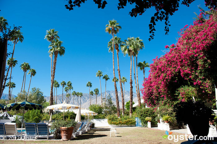 Palm Springs is one huge oasis in the middle of the California desert