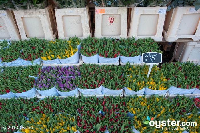 Los coloridos tulipanes de Amsterdam son una atracción principal durante los meses más cálidos.
