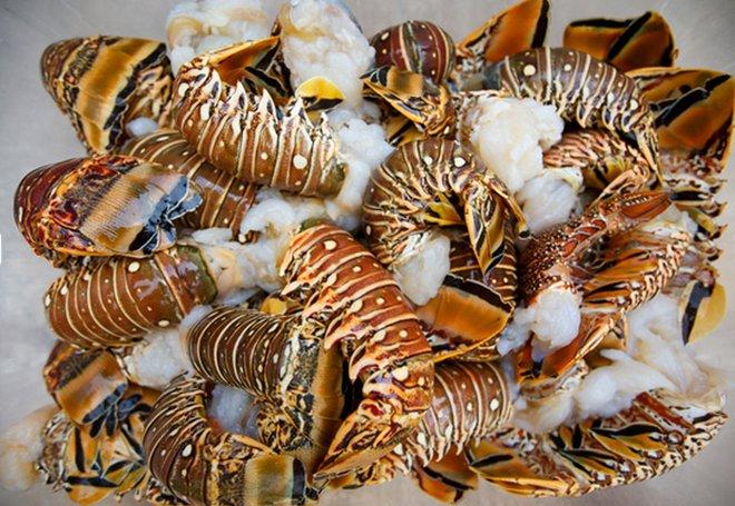 Fresh, Locally Caught Lobster at Coco Bistro (Photo credit: Cocobistro.tc)