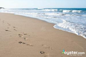 We'd like a seaweed-free beach, please!