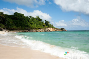 Beach at the Luxury Bahia Principe Cayo Levantado, Samana/Oyster
