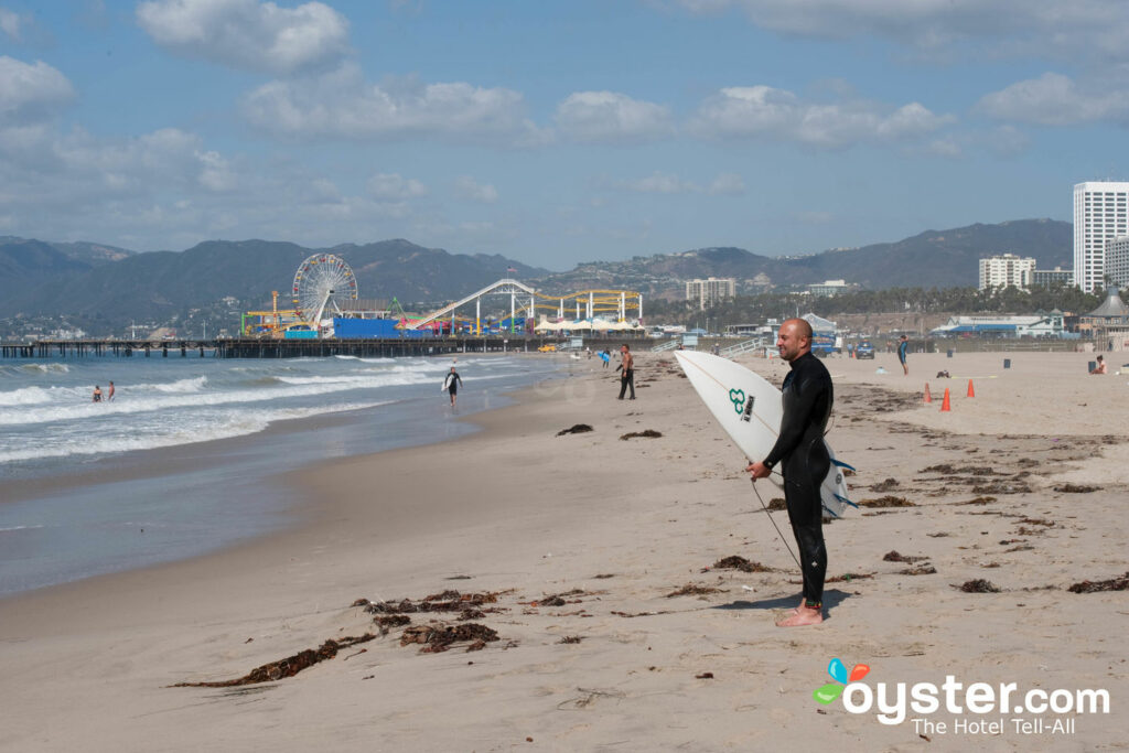 Playa en persianas en la playa / Oyster