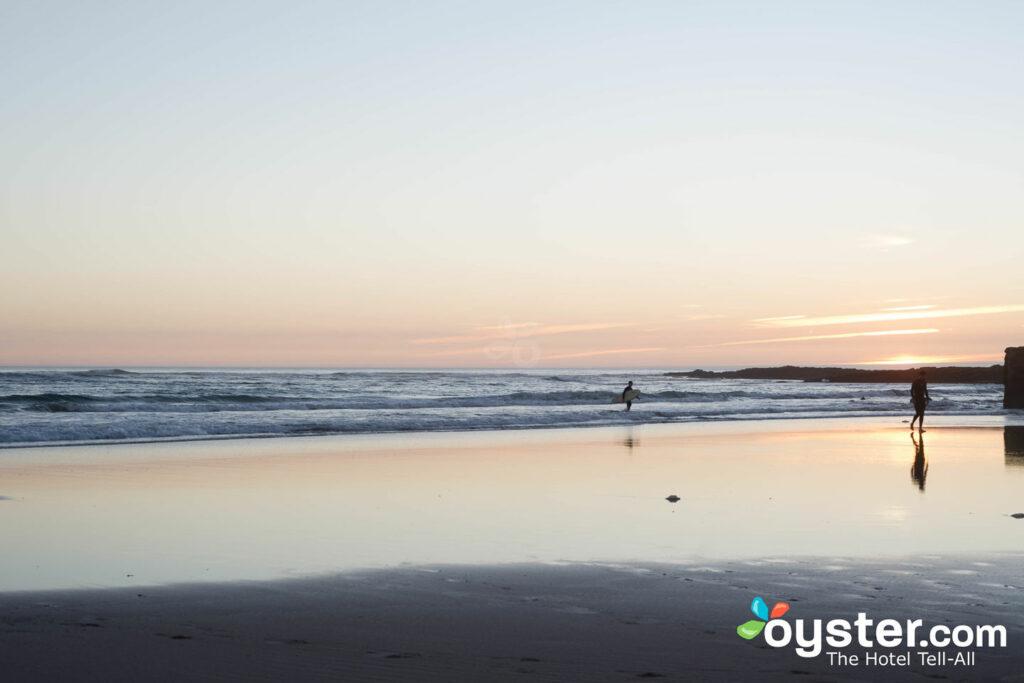 Carcavelos Beach, Lisbon/Oyster