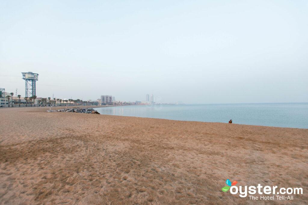 Barceloneta Beach, Barcelona/Oyster