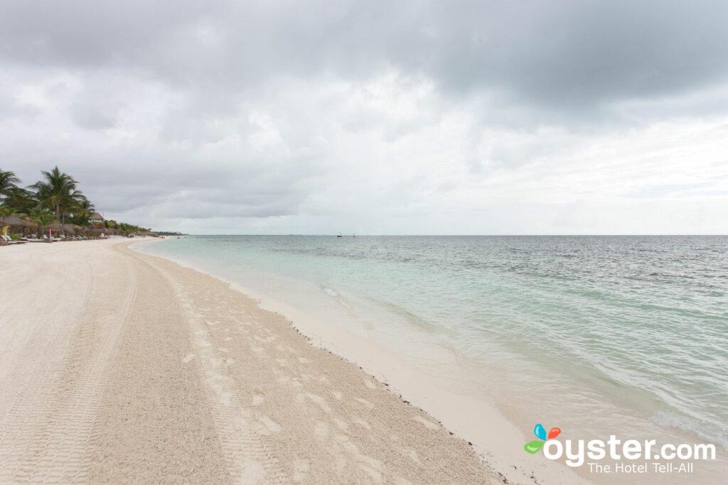 Amada Playa Mujeres / Oyster