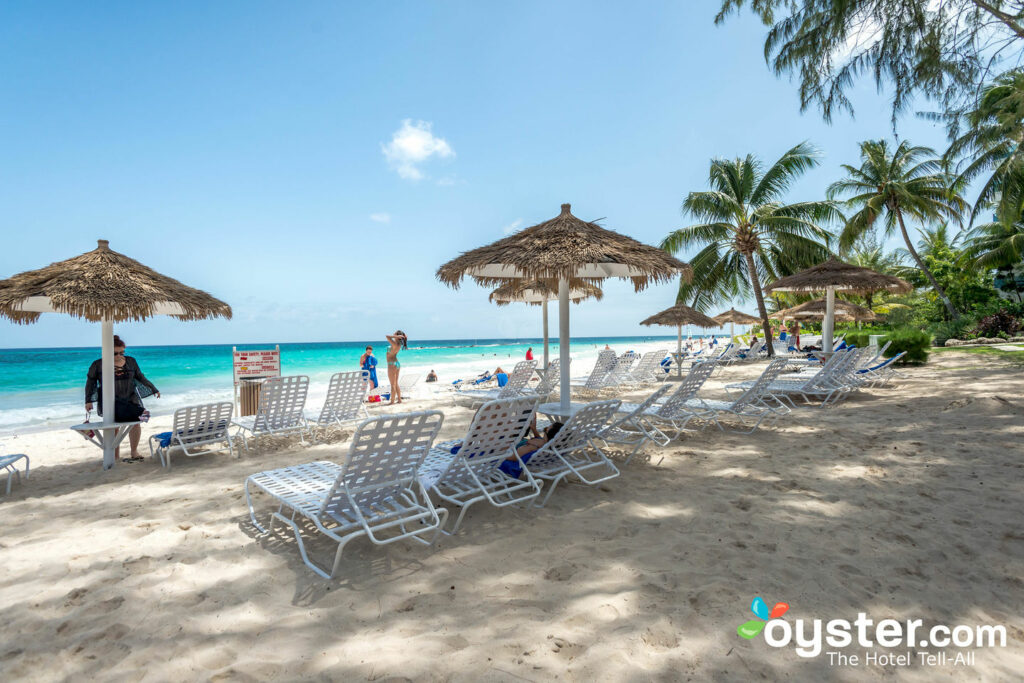Bougainvillea Barbados Review What To