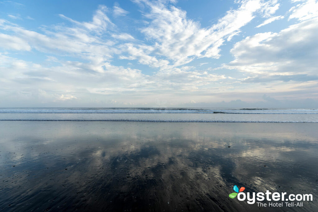 Kelapa Retreat Bali/Oyster