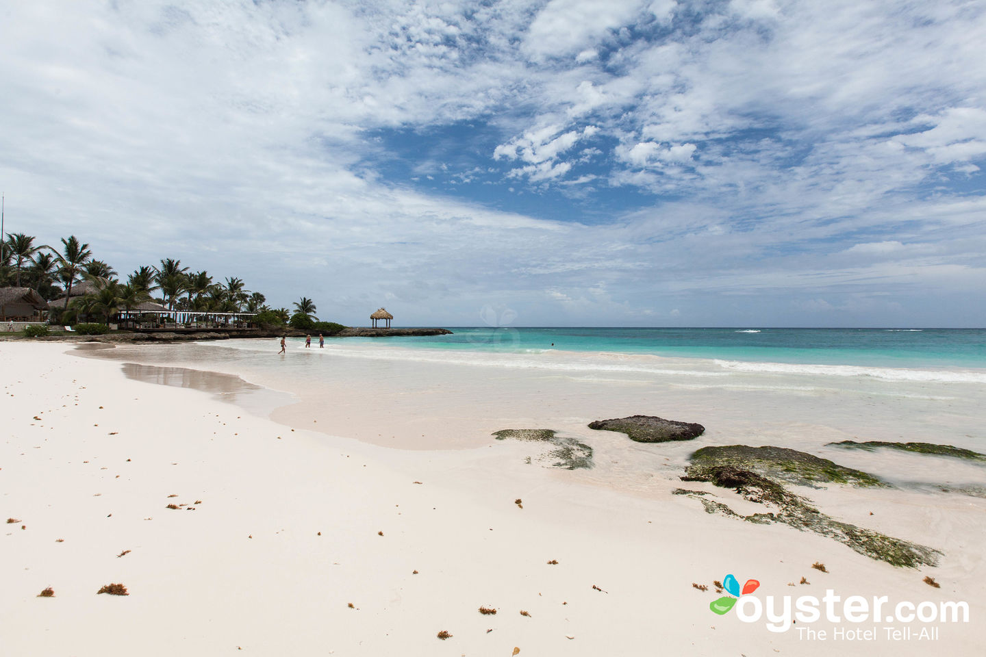 Eden Roc at Cap Cana Detailed Review, Photos & Rates (2019) | Oyster com