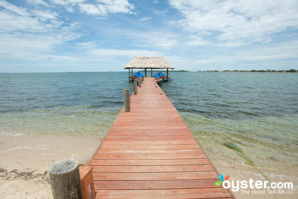 Chabil Mar, Belize / Huître