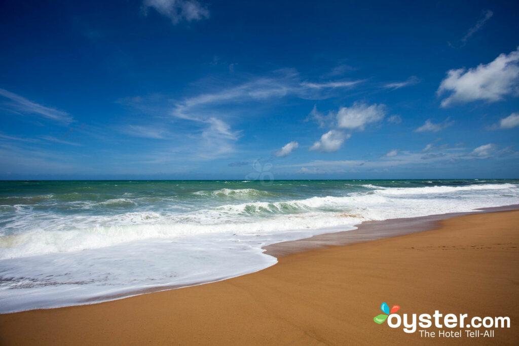 Playa en Phuket, Tailandia / Oyster