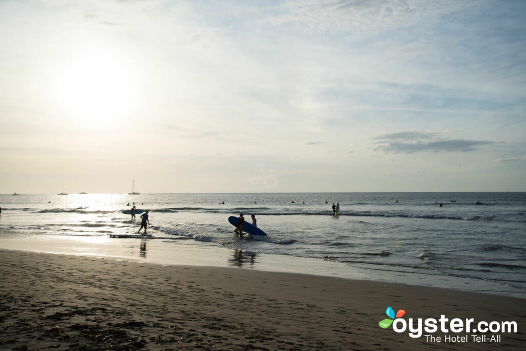 Playa en Witch's Rock Surf Camp / Oyster