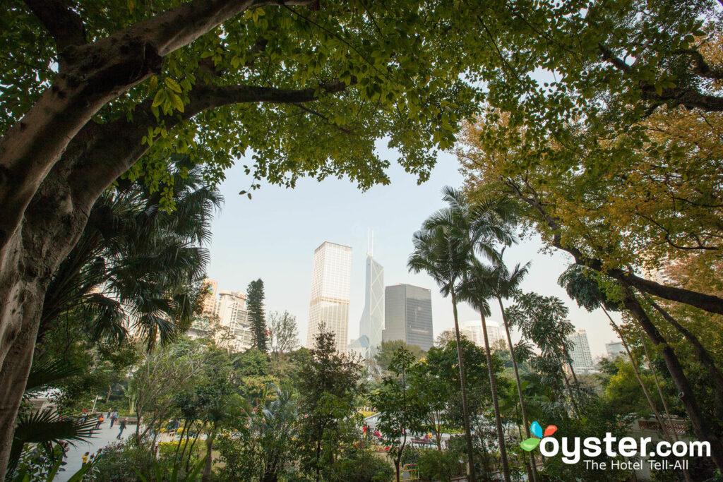 Botanical Gardens/Oyster