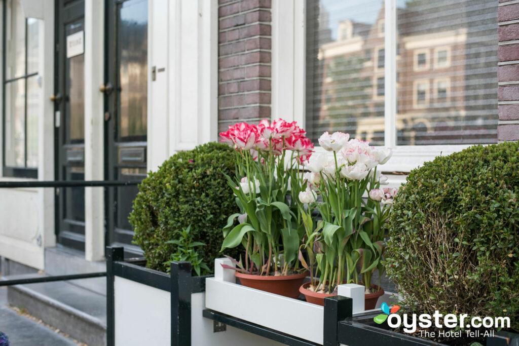 Jordaan, Amsterdam/Oyster