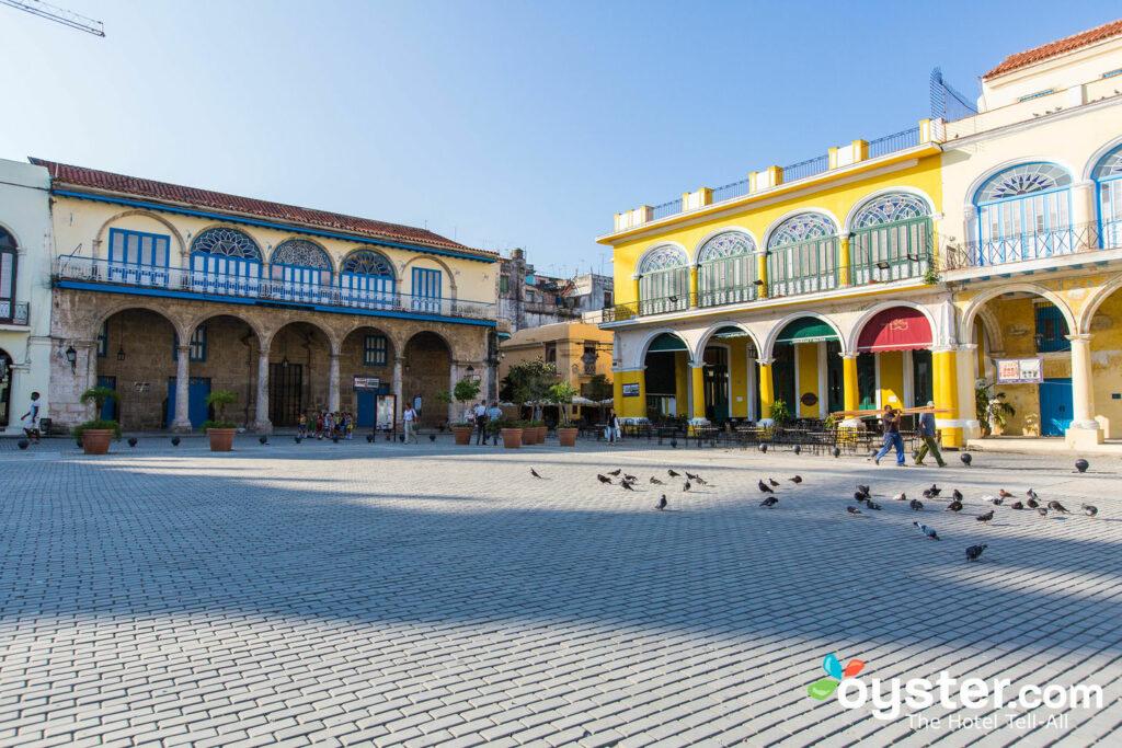 Plaza Vieja, La Havane / Huître