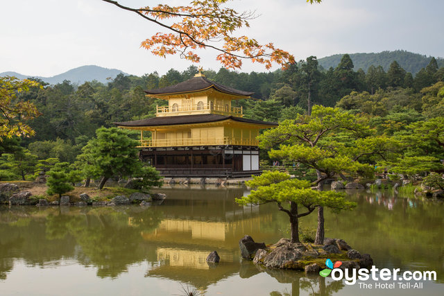 The Golden Pavilion, Kyoto/Oyster