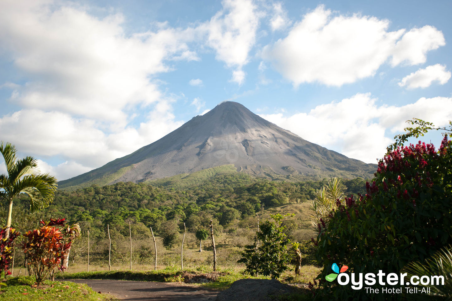 Arenal Volcano/Oyster