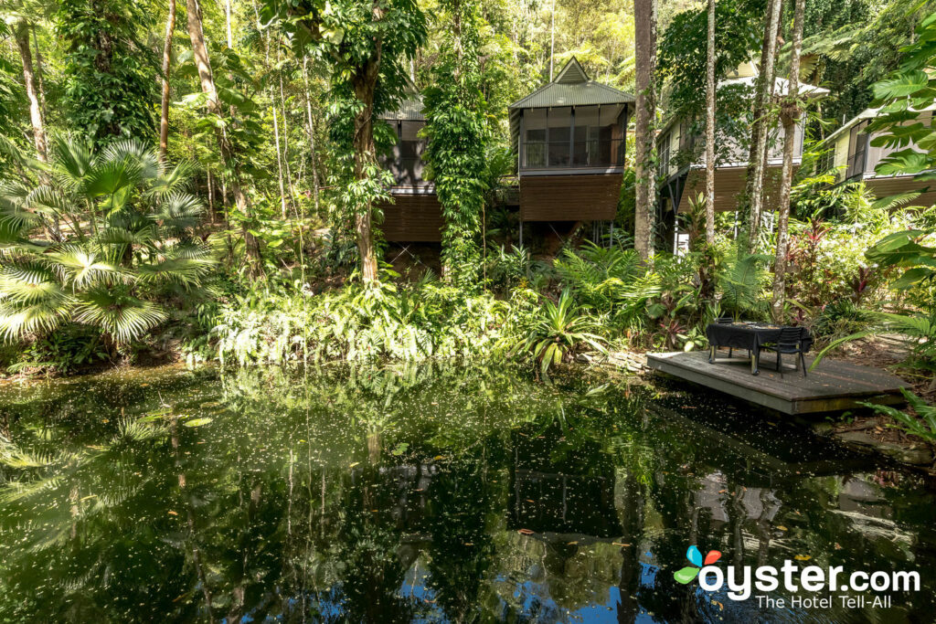 Daintree EcoLodge, Queensland / Oyster