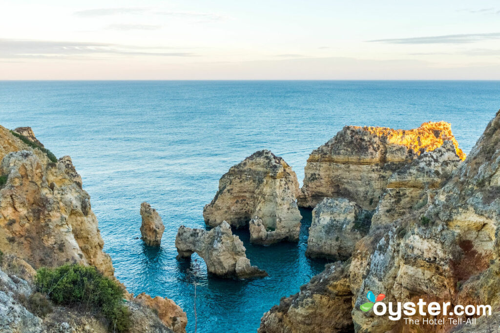 Lagos, Portugal/Oyster