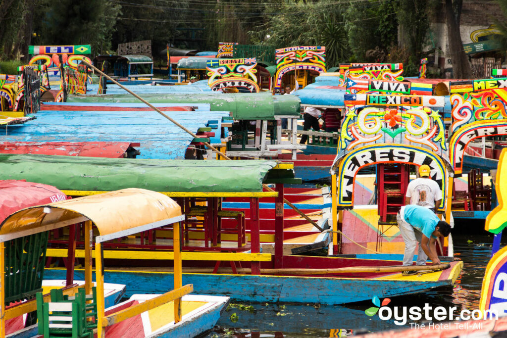 Xochimilco, Mexico City/Oyster