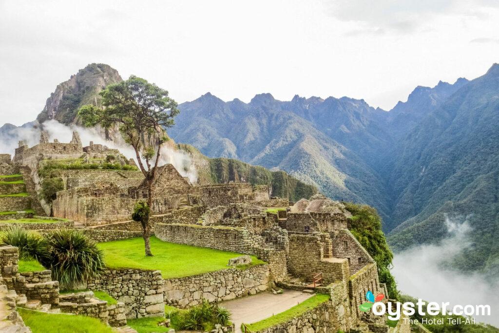 Machu Picchu / Oyster