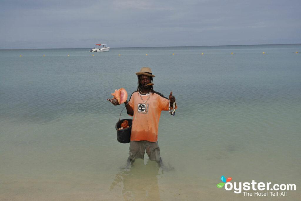 Praia no Hotel Riu Montego Bay / Oyster
