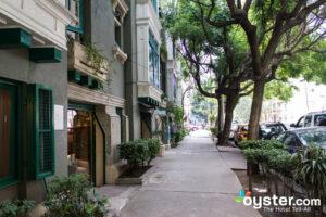 Condesa, Mexico City/Oyster