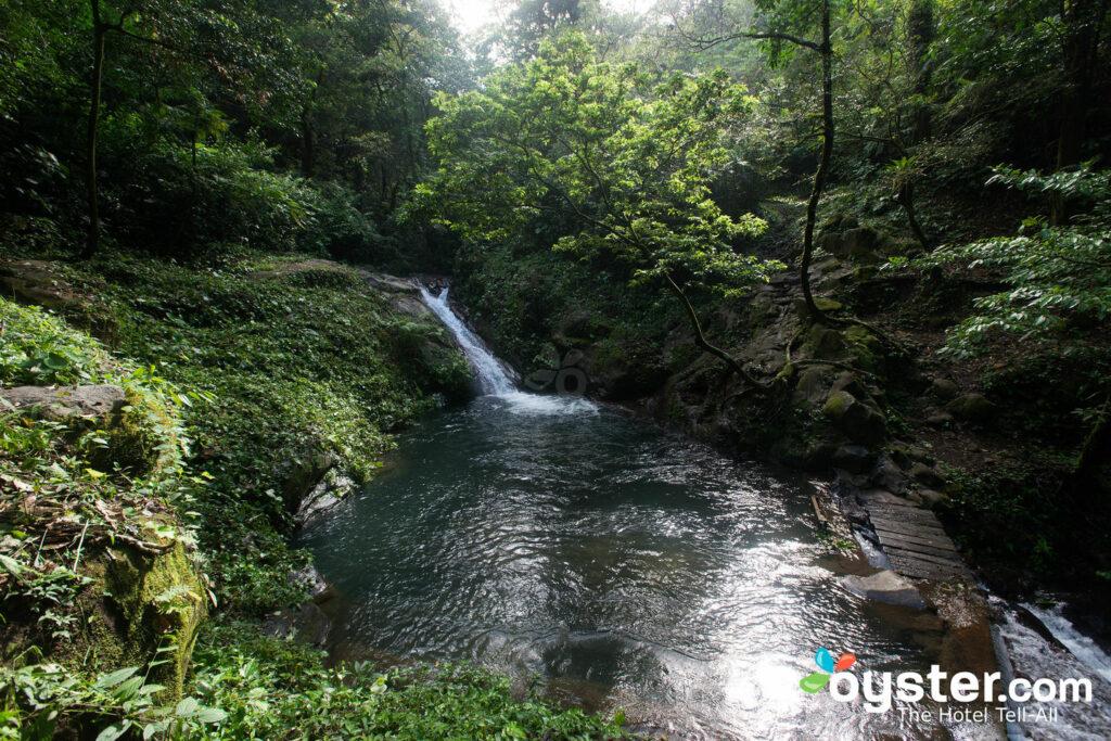 Acquascivolo naturale all'Hotel Borinquen Mountain Resort / Oyster