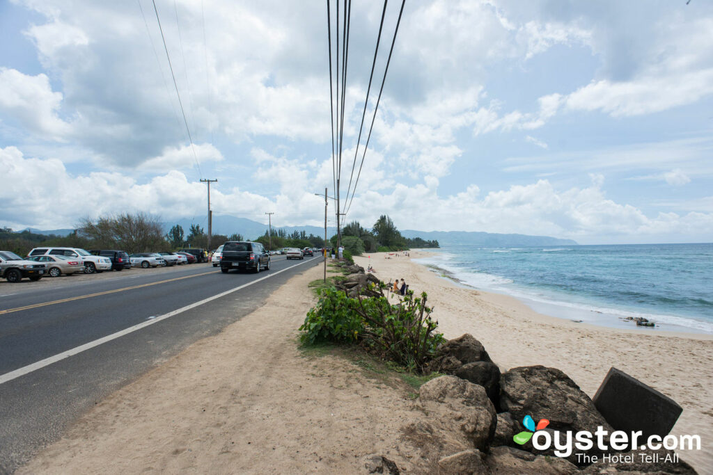 Road in Oahu/Oyster