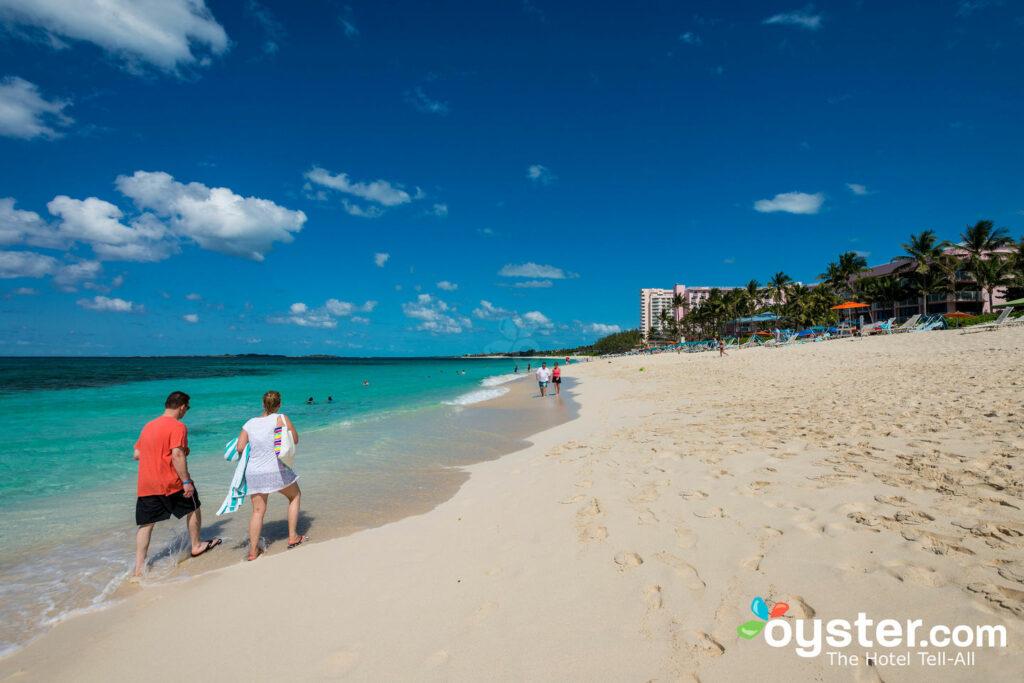 Paradise Island Beach, Bahamas / Ostra